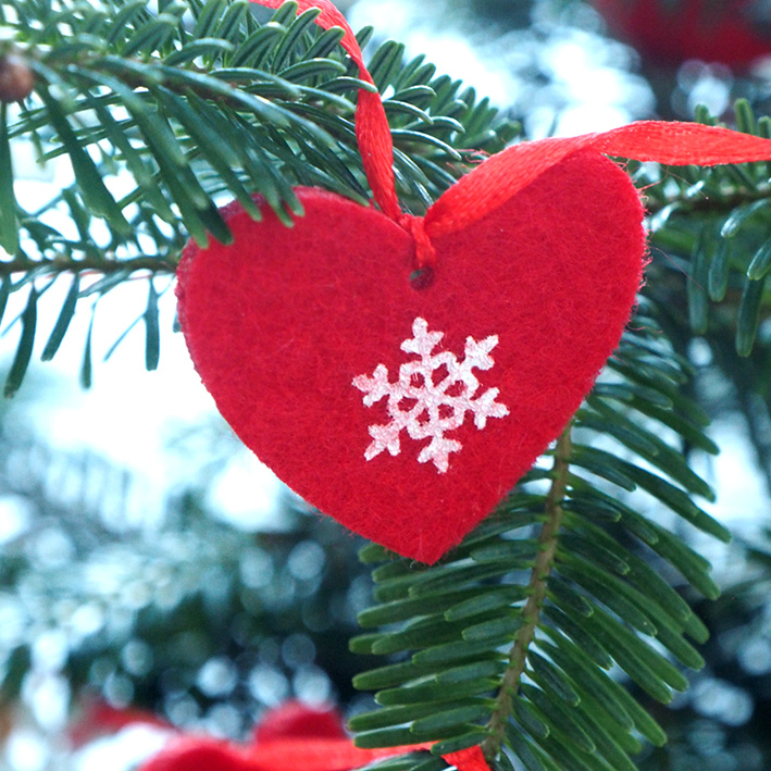Red heart on Nordmann fir